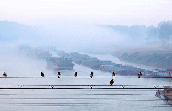 """全国政协调研组对""""京杭大运河经济带""""建设进行专题调研"""